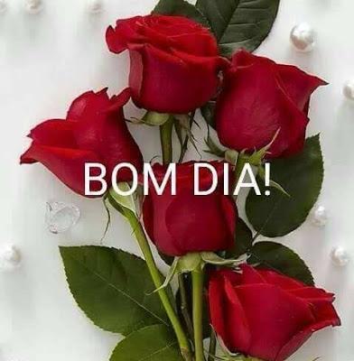 Mensagens De Bom Domingo Com Flores Frases E Mensagens Em