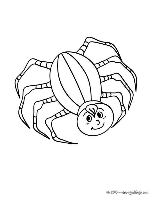 Dibujos Araña Halloween Para Colorear 17 Dibujos De Araña Para