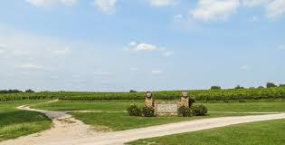 Winery «Lovers Leap Vineyards and Winery», reviews and photos, 1180 Lanes Mill Rd, Lawrenceburg, KY 40342, USA