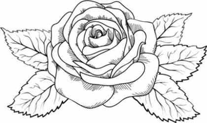 Imágenes De Flores Para Colorear Y Pintar