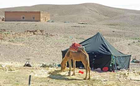 route vallée du Dadès - Sud maroccain