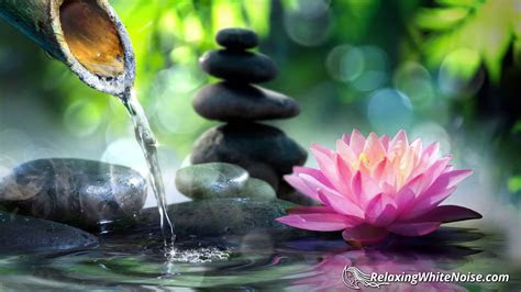 zen fountain water sounds  relaxation studying