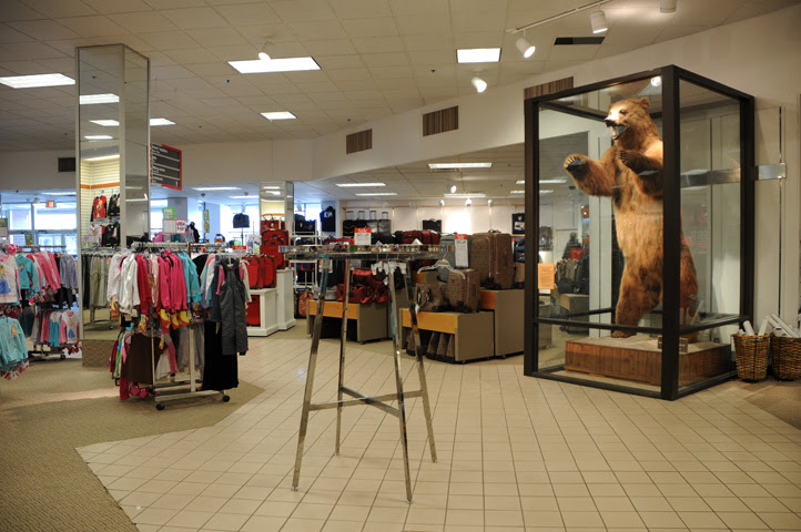 bear at anchorage jc penneys_3107 web