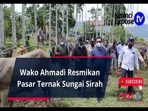 Wako Ahmadi Resmikan Pasar Ternak Sungai Sirah