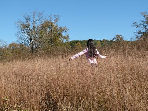 in the fields 2