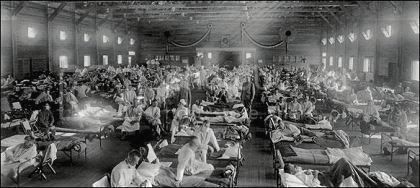 the 1918 Spanish Flu pandemic, when some 500,000 people in the US died. Worldwide the death toll was between 20 million and 50 million. Could this happen again?