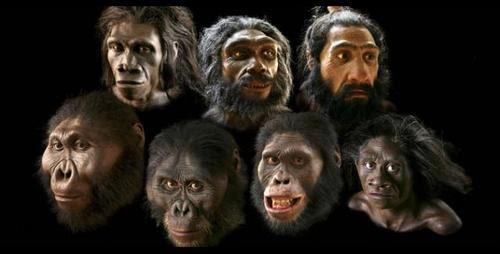 """Résultat de recherche d'images pour """"No different human species"""""""