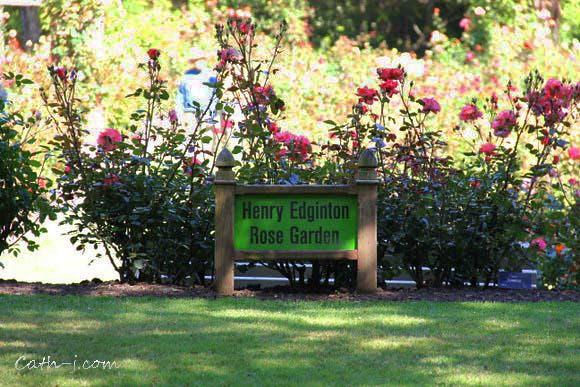 Rose Garden Invercargill Nzealand_5