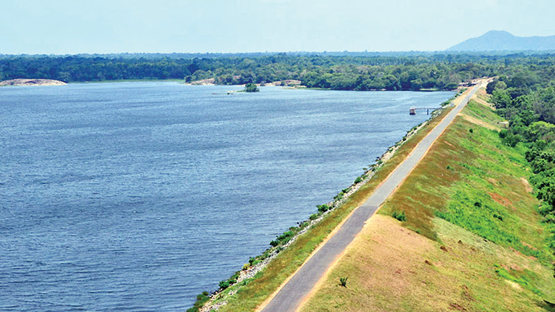 The Rajanganaya reservoir. Picture by Nimal Wijeainghe, Anuradhapura Additional District Group Corr.