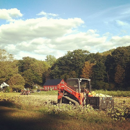 Hello, little tractor. (that's the last one, I promise)