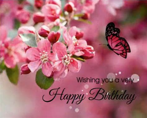 Birthday Wishes Cards, Free Birthday Wishes, Greeting
