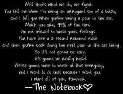 The Notebook Quotes We Fight