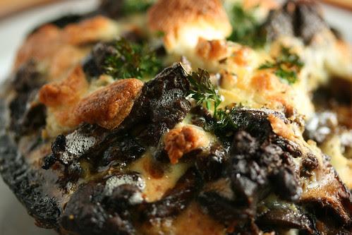Close up mushroom