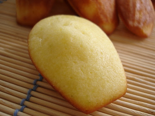 Lime honey madeleines