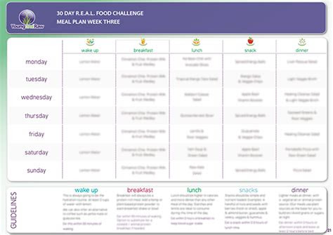 day real food meal plans