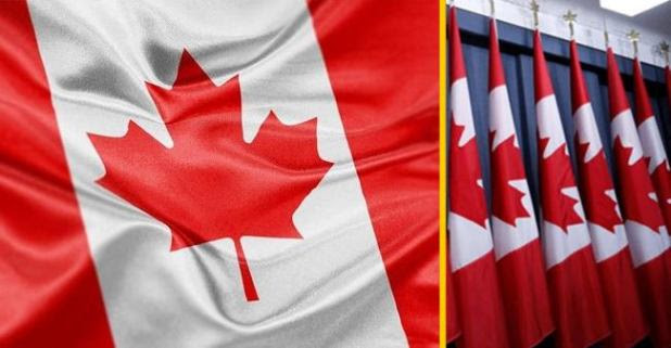 Canada is all set to bring special visa schemes, Indians will get the benefits