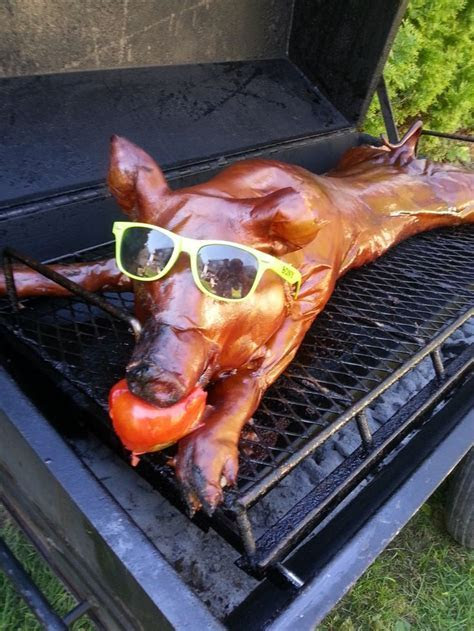 Ln fest : ) pig roast wedding reception ideas   visit