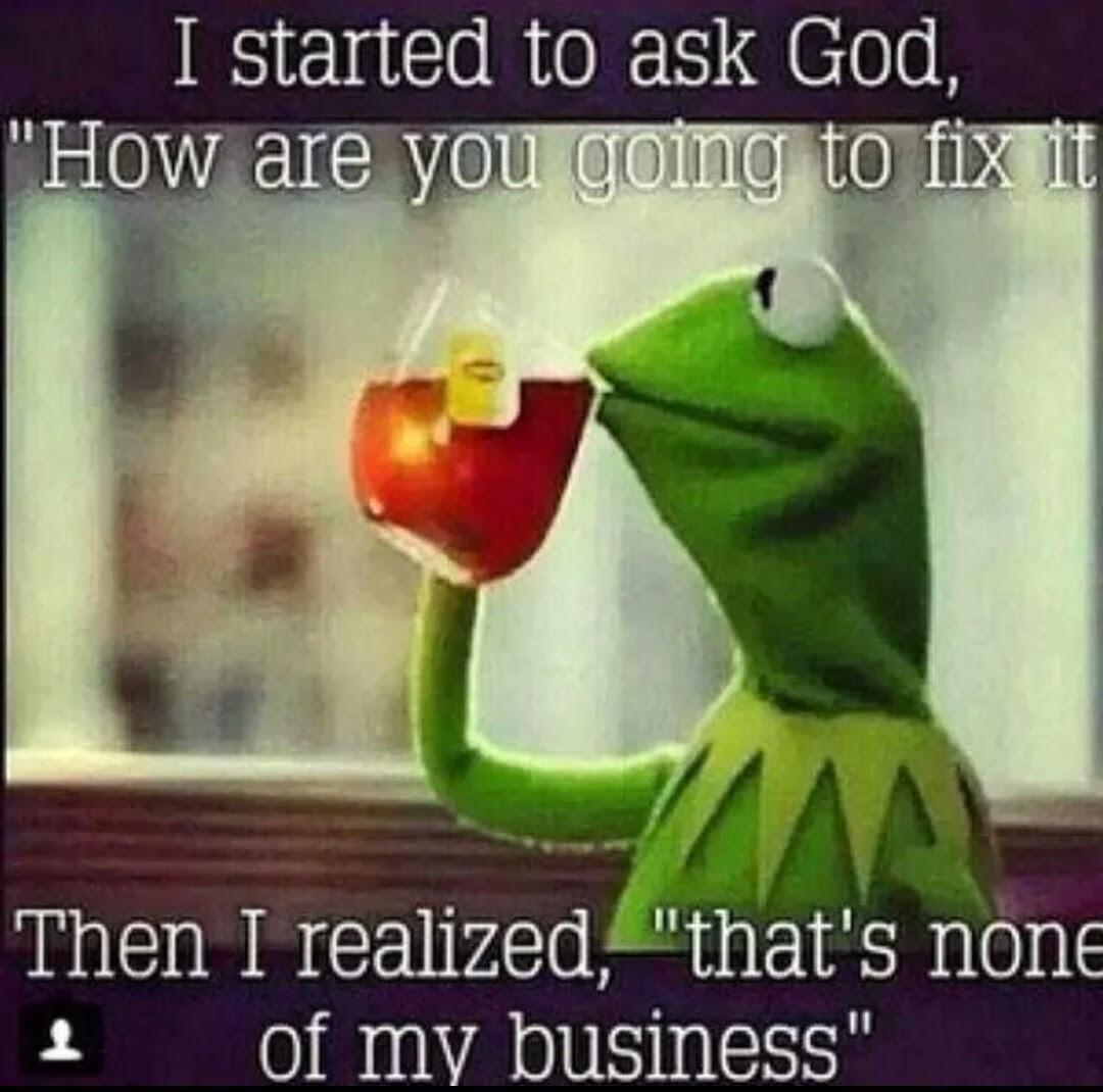 Fwd Kermit Is Wise Beyond His Years Forwardsfromgrandma