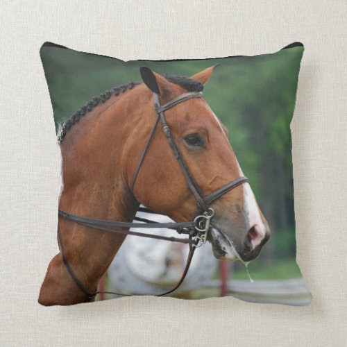 Paint Show Horse Pillows