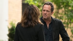 Law & Order: Special Victims Unit Season 19 : Mood
