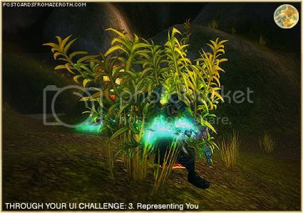Postcards of Azeroth: Through Your Interface Challenge - Day 3 - Representing You, by Rioriel of theshatar.eu