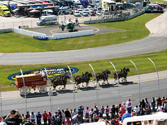 BudClydesdales_92009