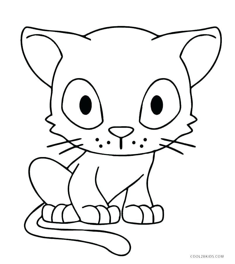 Cat Anatomy For Drawing | Free download on ClipArtMag