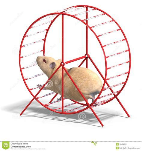 Cute Hamster In A Hamster Wheel Stock Illustration   Illustration: 10434221