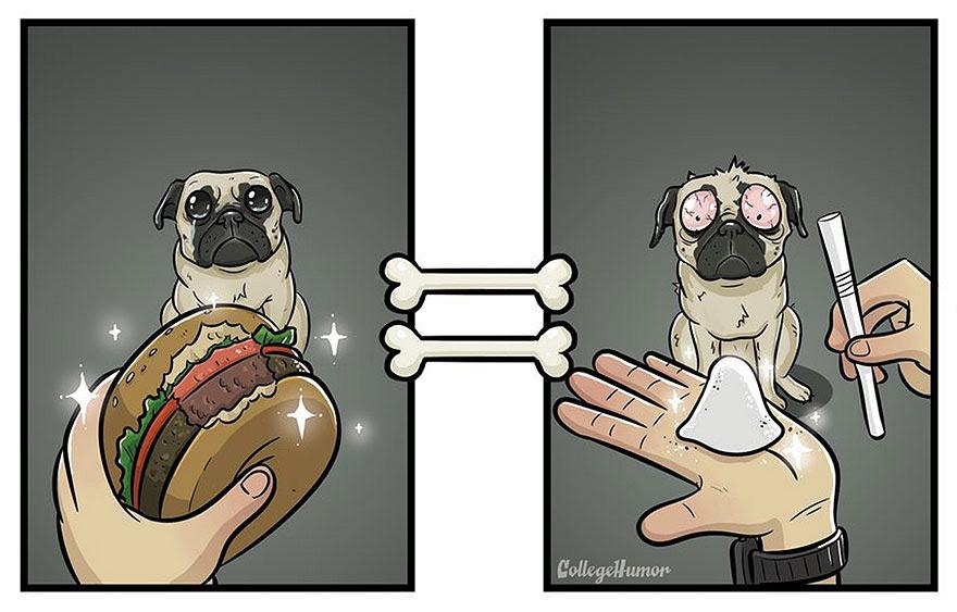 mundo-segun-perros-robert-brown (2)