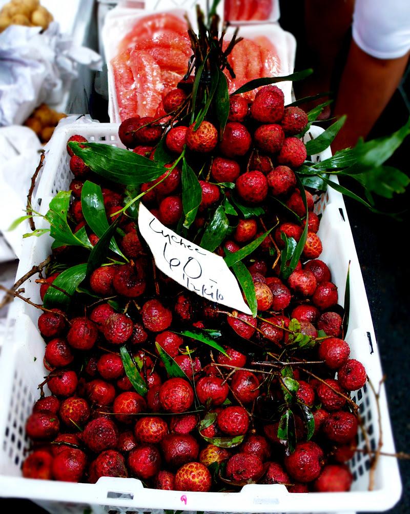 salcedo lychee