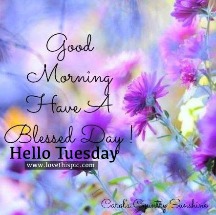 Good Morning Have A Blessed Day Hello Tuesday Pictures Photos