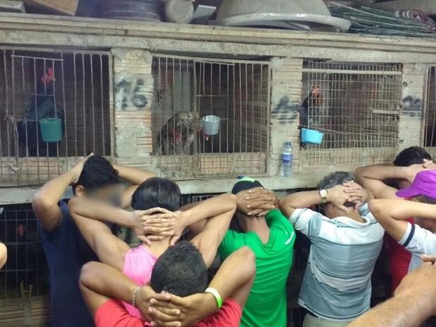 Polícia resgatou 60 aves em uma rinha de galo em Caruaru (Foto: Divulgação/Polícia Militar)