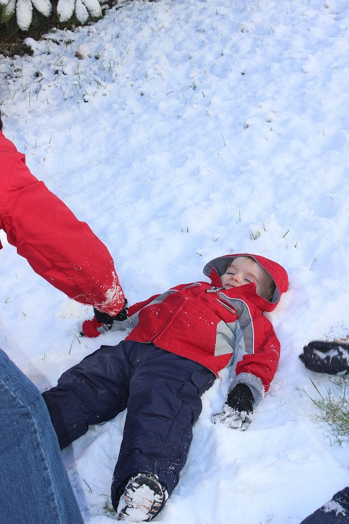 photo snow40_zpsa1089994.jpg