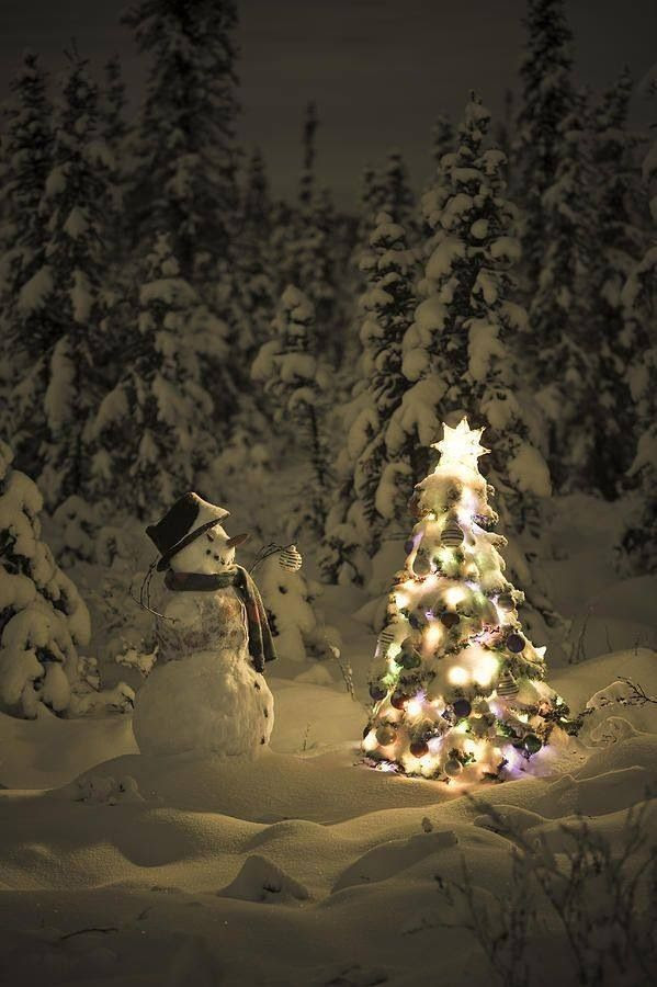Snowman & Tree In The Woods