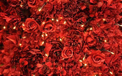 Red Roses Lights Wallpapers   HD Wallpapers   ID #12140