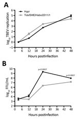 Thumbnail of Time course of tick-borne encephalitis virus (TBEV) multiplication from sample from a 67-year-old man in Sweden, 2011. A549 cells were infected with the virus isolated from the tick in this study, tick/SWE/Habo/2011/1, and reference strain Hypr at multiplicity of infection 0.1. Total cellular RNA and cell culture supernatants were collected at different time points postinfection. A) Intracellular levels of viral RNA quantified by real-time reverse transcription PCR analysis. B) Viru