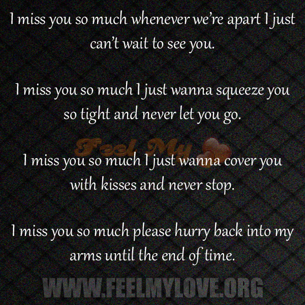 Quotes About I Miss You So Much 21 Quotes