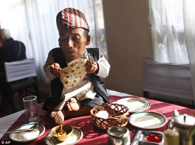 Big appetite: Chandra tucks into a meal of curry and naan bread to celebrate being crowned the world's smallest man