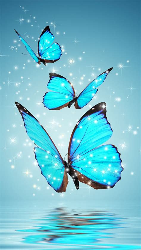 blue butterflies wallpaper  iphone wallpapers