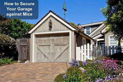 How to Keep Mice Out of the Garage