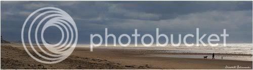 Panorama plage mer vague hiver