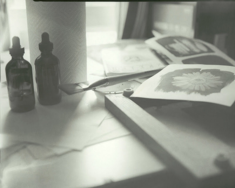 Cyanotype work area