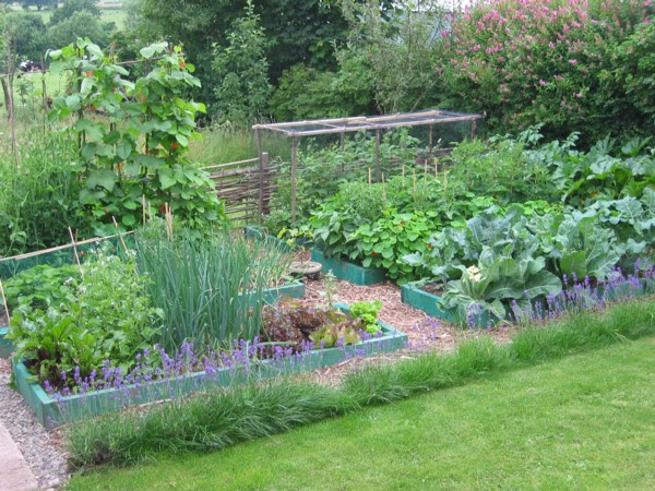 Announcing The Permaculture Blog The Permablog