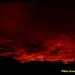 sunset rtg 1