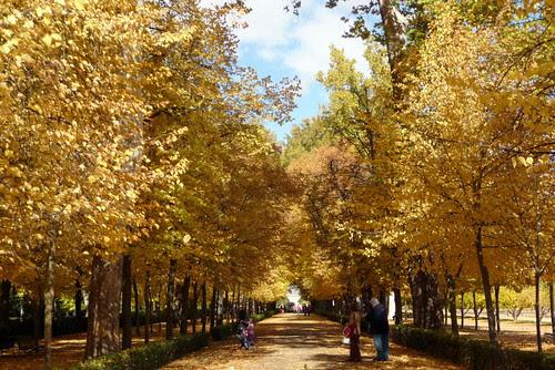 fotos de otro otoño