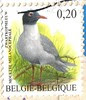 BE-27115(Stamp 4)