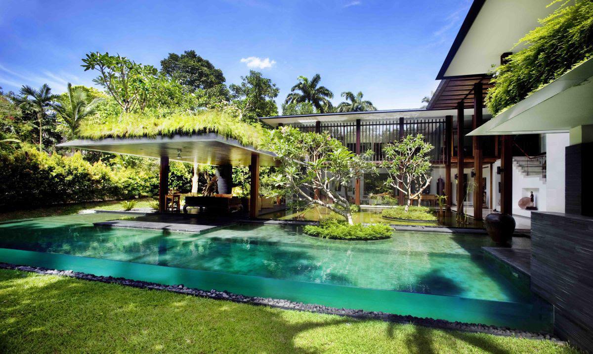 Lush-Paradise