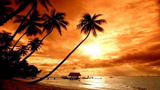 The Island of Bali