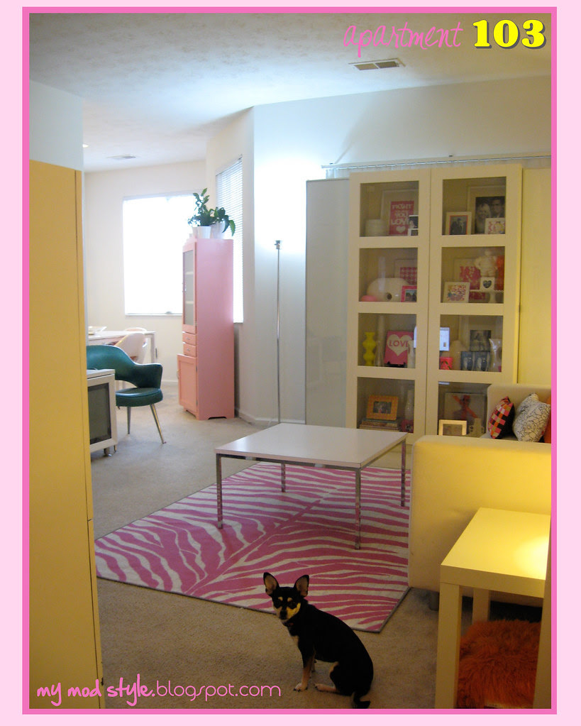 apartment103 living room1