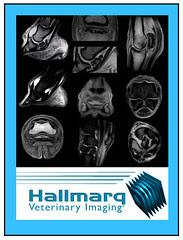 Hallmarq mutli-image with logo